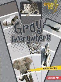 Lightning Bolt Books - Colors Everywhere: Gray Everywhere, Kristin Sterling