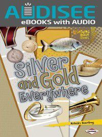 Lightning Bolt Books - Colors Everywhere: Silver and Gold Everywhere, Kristin Sterling