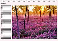Lila - die mystische Farbe (Tischkalender 2019 DIN A5 quer) - Produktdetailbild 4