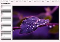 Lila - die mystische Farbe (Tischkalender 2019 DIN A5 quer) - Produktdetailbild 11