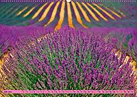 Lila - die mystische Farbe (Wandkalender 2019 DIN A2 quer) - Produktdetailbild 7