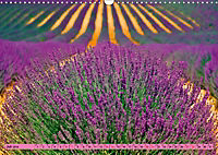 Lila - die mystische Farbe (Wandkalender 2019 DIN A3 quer) - Produktdetailbild 7