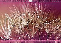 Lila - die mystische Farbe (Wandkalender 2019 DIN A4 quer) - Produktdetailbild 9