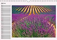 Lila - die mystische Farbe (Wandkalender 2019 DIN A4 quer) - Produktdetailbild 7
