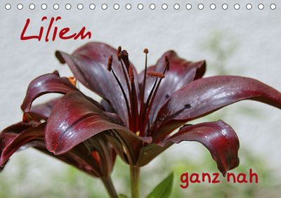 Lilien ganz nah (Tischkalender 2019 DIN A5 quer), Geiger Günther