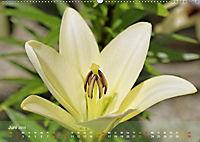Lilien ganz nah (Wandkalender 2019 DIN A2 quer) - Produktdetailbild 6