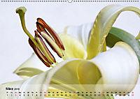 Lilien ganz nah (Wandkalender 2019 DIN A2 quer) - Produktdetailbild 3