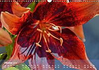 Lilien ganz nah (Wandkalender 2019 DIN A3 quer) - Produktdetailbild 10