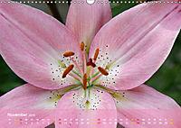 Lilien ganz nah (Wandkalender 2019 DIN A3 quer) - Produktdetailbild 11