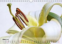 Lilien ganz nah (Wandkalender 2019 DIN A4 quer) - Produktdetailbild 3