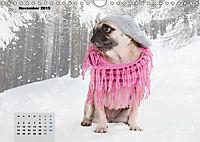Lillie Mopsgetier - mopsfidel durchs Jahr (Wandkalender 2019 DIN A4 quer) - Produktdetailbild 11