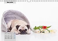Lillie Mopsgetier - mopsfidel durchs Jahr (Wandkalender 2019 DIN A4 quer) - Produktdetailbild 3