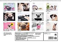 Lillie Mopsgetier - mopsfidel durchs Jahr (Wandkalender 2019 DIN A3 quer) - Produktdetailbild 13