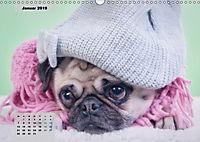Lillie Mopsgetier - mopsfidel durchs Jahr (Wandkalender 2019 DIN A3 quer) - Produktdetailbild 1