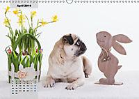 Lillie Mopsgetier - mopsfidel durchs Jahr (Wandkalender 2019 DIN A3 quer) - Produktdetailbild 4