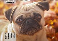 Lillie Mopsgetier - mopsfidel durchs Jahr (Wandkalender 2019 DIN A3 quer) - Produktdetailbild 10