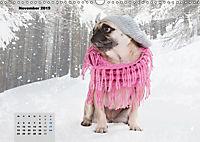 Lillie Mopsgetier - mopsfidel durchs Jahr (Wandkalender 2019 DIN A3 quer) - Produktdetailbild 11