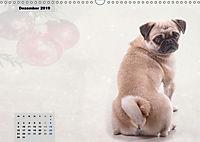 Lillie Mopsgetier - mopsfidel durchs Jahr (Wandkalender 2019 DIN A3 quer) - Produktdetailbild 12