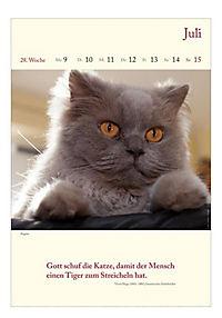 Literaturkalender Katzen 2018 - Produktdetailbild 1