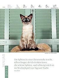 Literaturkalender Katzen 2019 - Produktdetailbild 1