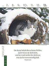 Literaturkalender Katzen 2019 - Produktdetailbild 2