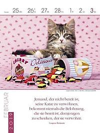 Literaturkalender Katzen 2019 - Produktdetailbild 9