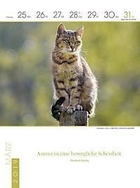 Literaturkalender Katzen 2019 - Produktdetailbild 13