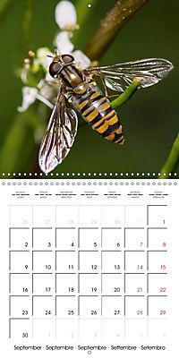 Little Critters In The UK (Wall Calendar 2019 300 × 300 mm Square) - Produktdetailbild 9