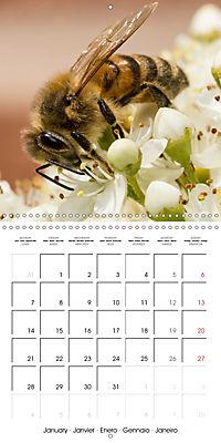 Little Critters In The UK (Wall Calendar 2019 300 × 300 mm Square) - Produktdetailbild 1
