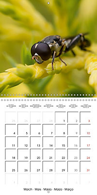 Little Critters In The UK (Wall Calendar 2019 300 × 300 mm Square) - Produktdetailbild 3