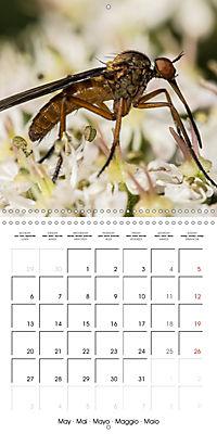 Little Critters In The UK (Wall Calendar 2019 300 × 300 mm Square) - Produktdetailbild 5