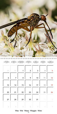 Little Critters In The UK (Wall Calendar 2019 300 × 300 mm Square) - Produktdetailbild 5