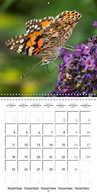 Little Critters In The UK (Wall Calendar 2019 300 × 300 mm Square) - Produktdetailbild 11