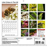 Little Critters In The UK (Wall Calendar 2019 300 × 300 mm Square) - Produktdetailbild 13
