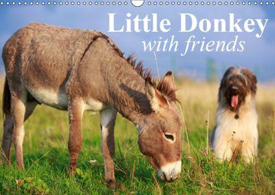 Little Donkey with Friends (Wall Calendar 2019 DIN A3 Landscape), Elisabeth Stanzer