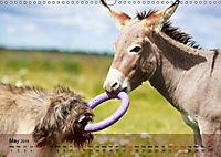 Little Donkey with Friends (Wall Calendar 2019 DIN A3 Landscape) - Produktdetailbild 5