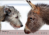 Little Donkey with Friends (Wall Calendar 2019 DIN A3 Landscape) - Produktdetailbild 2