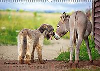 Little Donkey with Friends (Wall Calendar 2019 DIN A3 Landscape) - Produktdetailbild 3