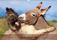 Little Donkey with Friends (Wall Calendar 2019 DIN A3 Landscape) - Produktdetailbild 6