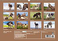 Little Donkey with Friends (Wall Calendar 2019 DIN A3 Landscape) - Produktdetailbild 13