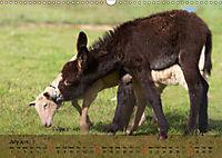 Little Donkey with Friends (Wall Calendar 2019 DIN A3 Landscape) - Produktdetailbild 7