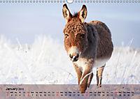 Little Donkey with Friends (Wall Calendar 2019 DIN A3 Landscape) - Produktdetailbild 1
