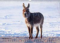 Little Donkey with Friends (Wall Calendar 2019 DIN A3 Landscape) - Produktdetailbild 11