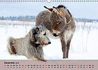 Little Donkey with Friends (Wall Calendar 2019 DIN A3 Landscape) - Produktdetailbild 12