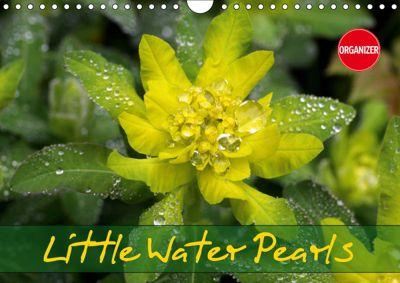 Little Water Pearls (Wall Calendar 2019 DIN A4 Landscape), Gisela Kruse