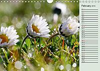 Little Water Pearls (Wall Calendar 2019 DIN A4 Landscape) - Produktdetailbild 2