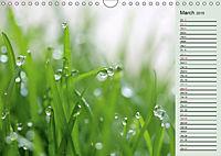 Little Water Pearls (Wall Calendar 2019 DIN A4 Landscape) - Produktdetailbild 3