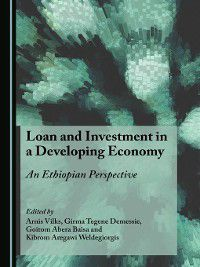 Loan and Investment in a Developing Economy