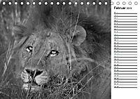 Löwen schwarz weiß (Tischkalender 2019 DIN A5 quer) - Produktdetailbild 2