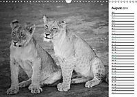 Löwen schwarz weiß (Wandkalender 2019 DIN A3 quer) - Produktdetailbild 8